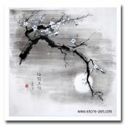 Branche Cerisier Du Japon Galerie Creation